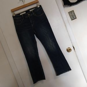 Anthropologie Pilcro Raw Edge Hem Ankle Jeans 27